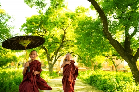 myanmar: Two little Buddhist monks running outdoors under shade of green tree, outside monastery, Myanmar. Stock Photo