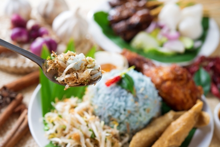 malaya: Nasi kerabu, famous Malaysian Malay rice dish. Traditional east coast blue rice. Popular in states such as Terengganu or Kelantan . Malaysia food, Asian cuisine.