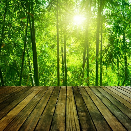 bamboo leaves: Wooden platform and Asian Bamboo forest with morning sunlight.