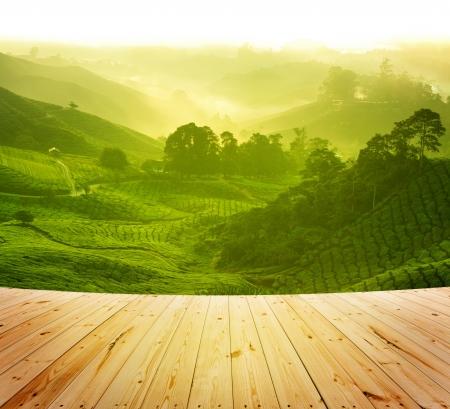 Houten platform naast theeplantage in ochtend uitzicht, Cameron Highland Maleisië