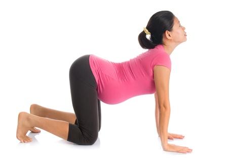 mujer arrodillada: Meditación, yoga prenatal. Longitud total sana mujer embarazada asiática que hace yoga en suelo, fullbody aislado sobre fondo blanco. Posiciones gato Yoga.