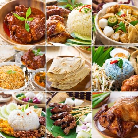 Aziatische voedsel verzamelen. Diverse Azië keuken, curry, rijst, noedels, biryani, roti chapati, nasi kerabu, nasi lemak, sate en gebraden kip. Stockfoto