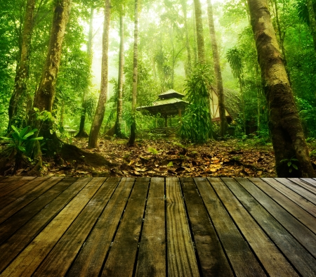 Wooden platform and green forest and huts in a misty morning, Malaysia. Stock Photo