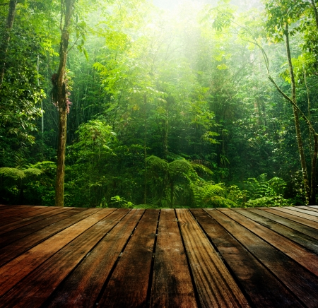 incredible: Wooden floor perspective and green forest with ray of light.