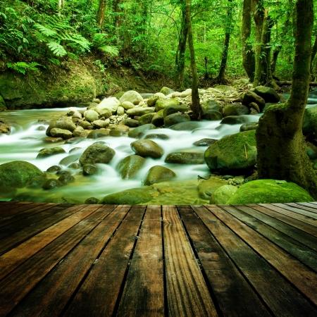 armonia: Madera perspectiva del suelo y una cascada natural de la montaña Foto de archivo