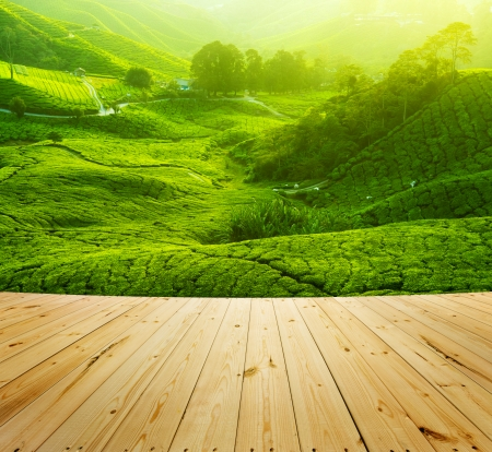 Tea Plantations at Cameron Highlands Malaysia, wood floor perspective. Sunrise in early morning with fog. photo