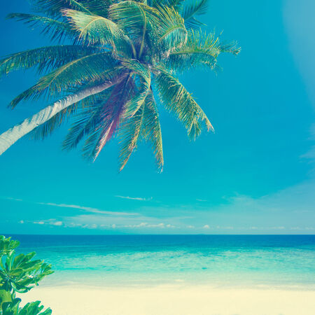 blue toned: Retro vintage style summer sea view with coconut tree at Perhentian island, Malaysia