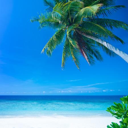 lang: Tropical beach, Lang Tengah Island Malaysia. Stock Photo