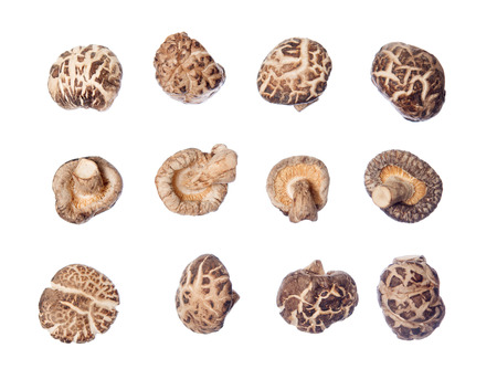 Group of dried shiitake mushrooms isolated on white background.