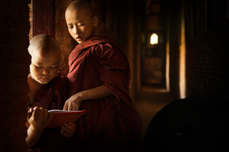 monk: Young Buddhist novice monk reading in monastery with beautiful natural sunlight from window. Buddhist teaching, Myanmar.