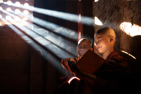 Young Buddhist novice monk reading in monastery. Beautiful natural sunlight from window. Buddhist teaching, Myanmar.