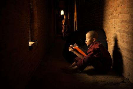 buddhist's: Young Buddhist novice monk reading book inside monastery, natural light shining thru.