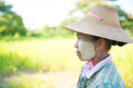 thanaka: Side view of a mature Burmese female farmer with thanaka powdered face who works in the field.