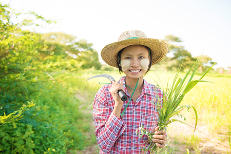 thanaka: Portrait of a young Burmese female farmer with thanaka powdered face working in field.