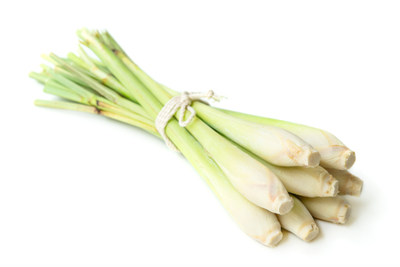 Fresh green lemongrass tied with rope, isolated on white background. Stock Photo