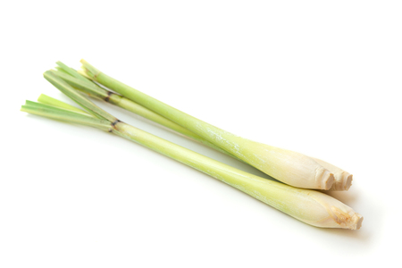 Fresh green lemongrass isolated on white background.