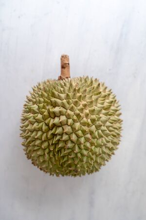 Malaysia famous king of fruits durian Black thorn on grey background.