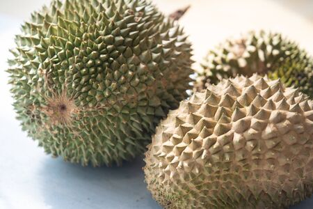 Malaysia famous king of fruits Blackthorn durian Black thorn close up. Imagens