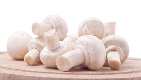 edible mushroom: A pile of fresh and aromatic mushrooms on a wooden board.