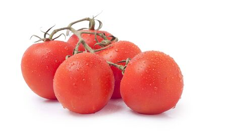 royalty free: Tomatoes