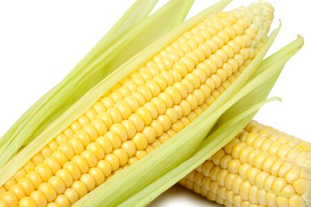 season photos: Corns Stock Photo