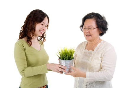 Senior woman and daughter holding a pot plant  green life concept   photo