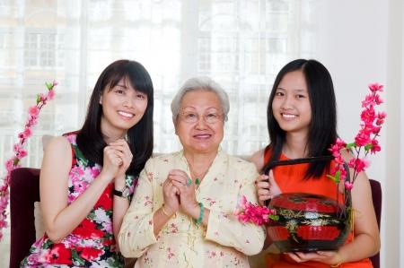Chinese new year Stock Photo - 22569395
