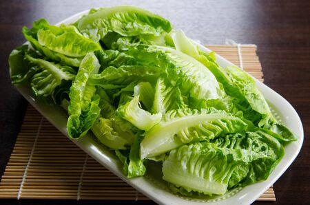 A plate of lettuce slice Stock Photo