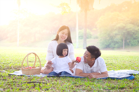 Asian family picnic Standard-Bild