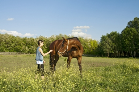 Girl and horse on the farm on a sunny day with nice clouds, collection photo