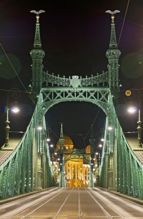 identifier: Liberty Bridge, Budapest by night, without identifier crest for creative work