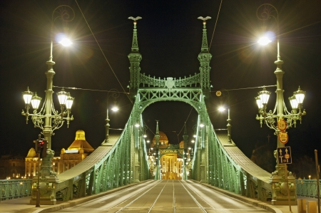 Liberty Bridge, Budapest by night, without identifier crest for creative work photo