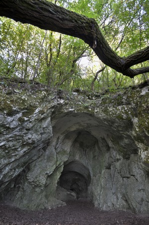 Huge cave entrance in the shade with trees over it Stock Photo - 22683679