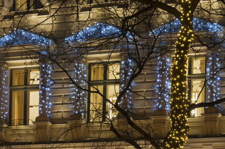 bough: Building facade with light string decoration at night with tree bough and lighting windows