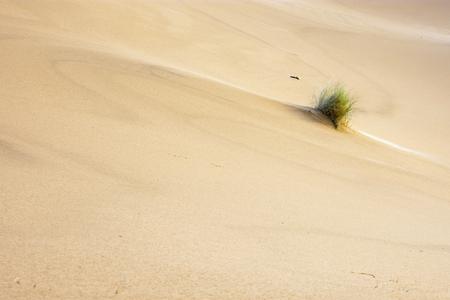 Sand desert dunes Merzouga, Morocco