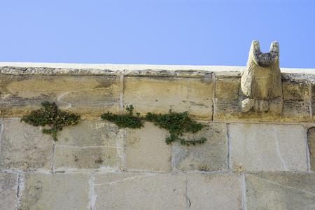 Hala Sultan Tekke Mosque wall detail