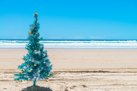 the bay: Christmas tree on a deserted beach in Byron Bay on the east coast of Australia.