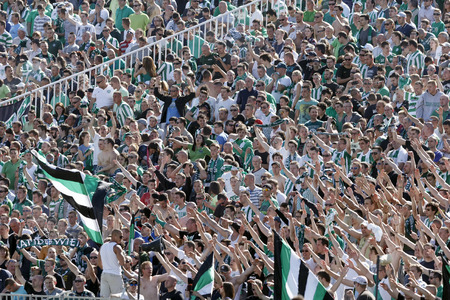 BUDAPEST, HUNGARY - MAY 10, 2014: Supporters of Ferencvaros celebrate the winning goal during Ferencvaros vs. Diosgyori VTK OTP Bank League football match at Puskas Stadium on May 10, 2014 in Budapest, Hungary.  Editorial