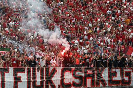 BUDAPEST, HUNGARY - MAY 25, 2014: Supporters of DVTK during Ujpest vs. Diosgyori VTK Hungarian Cup final football match at Puskas Stadium on May 25, 2014 in Budapest, Hungary.