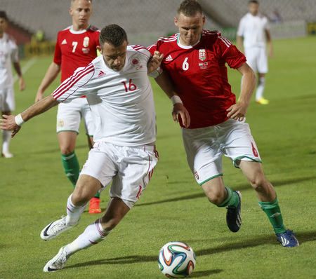 BUDAPEST, HUNGARY - JUNE 4, 2014: Duel between Hungarian Mihaly Korhut (r) and Albanian Sokol Cikalleshi during Hungary vs. Albania friendly football match at Puskas Stadium on June 4, 2014 in Budapest, Hungary.  Editorial