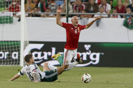 tripped: BUDAPEST, HUNGARY - SEPTEMBER 7, 2014: Hunagrian Jozsef Varga (r) is tripped up by Northern Irish Oliver Norwood during Hungary vs. Northern Ireland UEFA Euro 2016 qualifier football match at Groupama Arena on September 7, 2014 in Budapest, Hungary.
