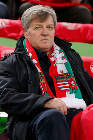 constitutional: BUDAPEST, HUNGARY - MARCH 29, 2015: Hungarian Constitutional Court judge, Istvan Stump during Hungary vs. Greece UEFA Euro 2016 qualifier football match in Groupama Arena.