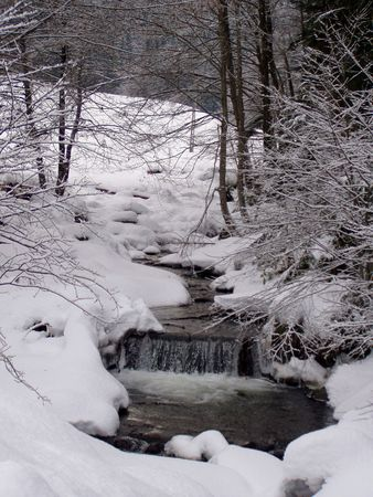 an icy spring (water) flowing through the winter forrest Stock Photo