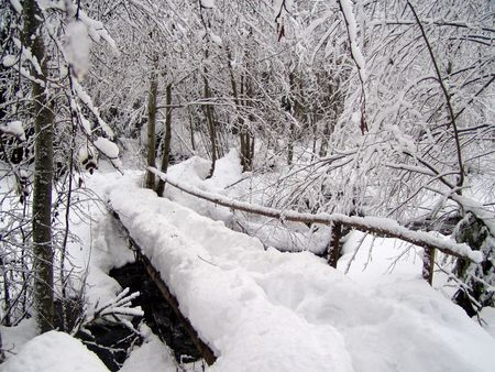small wooden bridge through a spring covered with snow in winter Stock Photo