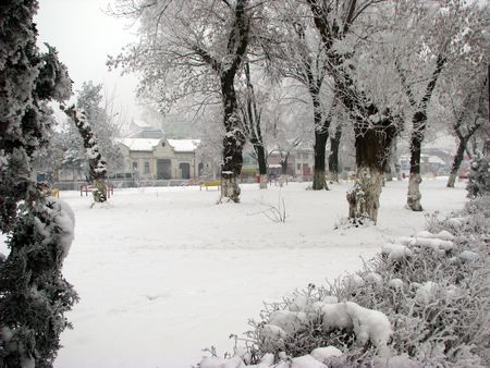 winter park Stok Fotoğraf