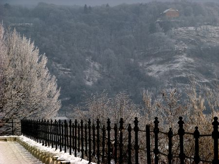 tranquille: fence and bush with hoarfrost - winter landscape