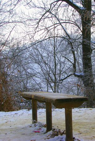 tranquille: lonely bench in winter - rural scene