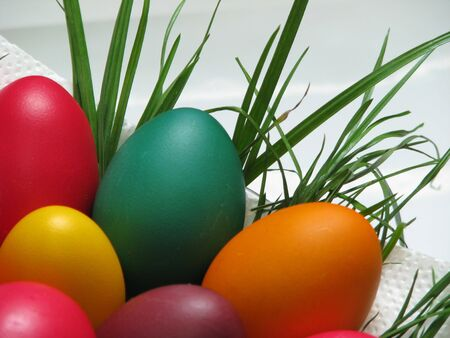 closeup of easter eggs and grass