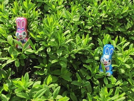 two easter treats hidden in a bush