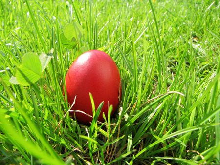 red easter egg in bright green grass photo